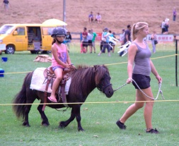 Always popular with the kids, pony rides.